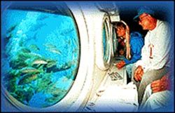 Viewing Underwater Activity
