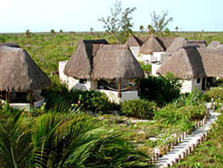 Cabins at EcoParaiso