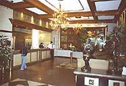 Lobby at Hotel Gillow