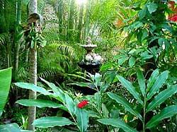 Fountain/Patio Casa San Juan