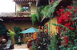 La Casa Encantada's Back Yard