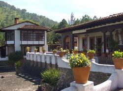 Color Pots at Quinta Margarita